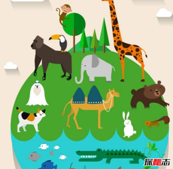地表最强壮的十大动物 老虎狮子仅排第二第三