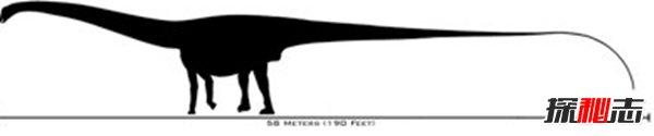 十大灭绝的可怕古生物 幸好早已经消失了!(照片曝光)