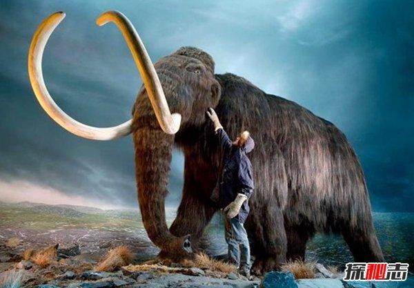 科学家重生灭绝动物?揭秘科学家想要复活的10种动物