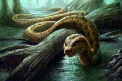 十大传说巨蛇:口吞恐龙的沃那比蛇仅第四 第一身长15米