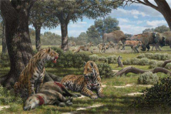 恐猫为什么灭绝?捕猎胜过剑齿虎,却在气象灾害中灭亡