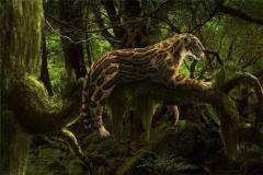 恐猫真的以人类为食吗 狒狒和南方古猿是它们的猎物