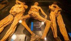 地球各地都发现巨型人骨 是否证明历史上曾有巨人族