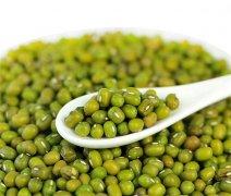 绿豆和山药可以一起吃吗 绿豆山药一起吃营养价值高