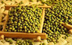 绿豆可以去湿气吗 绿豆可以清热解毒去湿气