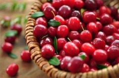 蔓越莓不能和什么一起吃 吃蔓越莓要注意什么