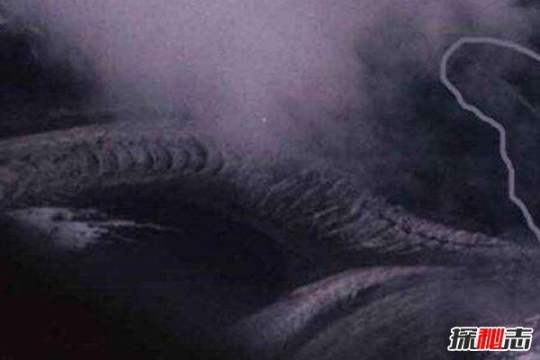 卫星拍到的真龙凤凰,鳞片清晰可见,实为冰川(辟谣)