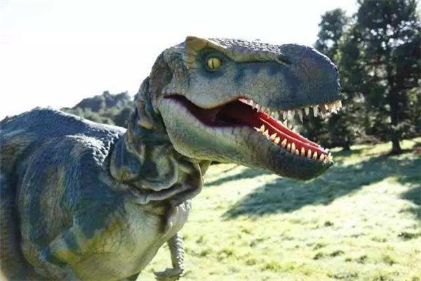 新西兰活捉一只恐龙是真的吗?极大可能是炒作(玩具恐龙)