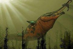 体型最大的两栖动物:锯齿螈,河中巨怪(长9米/重3吨)