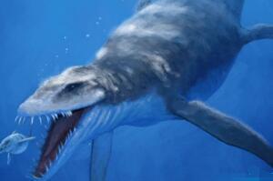 龙王鲸有多长,龙王鲸的天敌是谁(体长18米怕鼠白鲨)