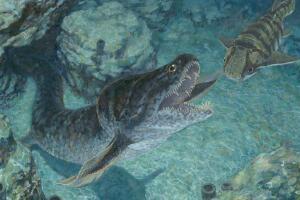 泥盆纪最凶猛的掠食者,爪齿鱼(巨大尖牙刺穿恐鱼)