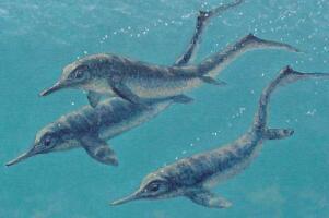 海豚的祖宗鱼龙,白垩纪最强水生食肉动物(身长达23米)