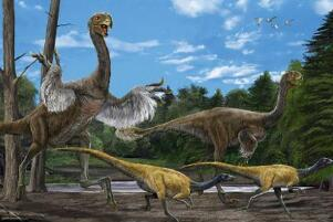 恐龙的演变过程图,槽齿类爬行动物-恐龙-鸟类(灭绝加速人类进化)