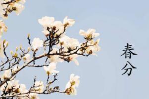 春分节气的含义是什么,春季已过一半(每年的3月20号左右)