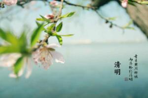 清明节气的含义是什么,清新明朗气候暖和(每年4月5号前后)