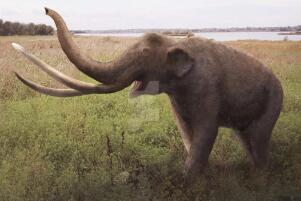 世界上最大的大象,古棱齿象(体长4米/1万年前灭绝)