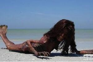 美人鱼传奇之谜,美人鱼化石证实美人鱼真实存在(图片)