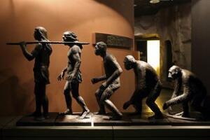 解密人类进化谜团,人类是杂交后代(交换基因形成人)