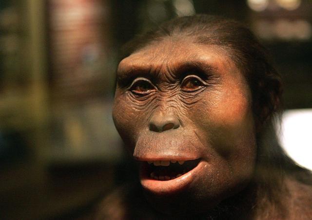 十万年后的人类会长成什么模样?不忍直视!