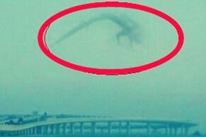 1995年安徽巨蟒渡劫事件,蟒蛇精化龙失败被雷劈死