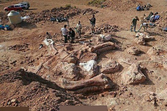 世界上最大的恐龙出现在阿根廷