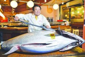 世界上最贵的鱼是什么鱼,巨型金枪鱼(价值1190万元)