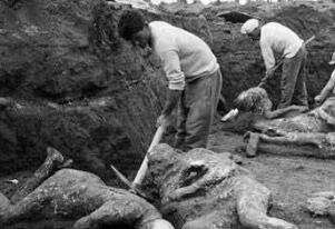 非洲杀人湖杀人于无形,一夜之间杀死1700人不留痕迹