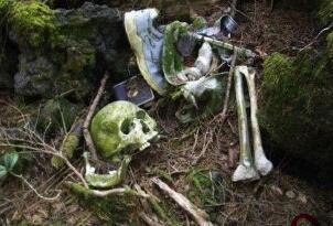 日本自杀森林充满咒怨,已搜出500具尸体(遍地都是尸骨)