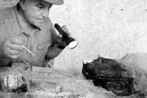 最古老的人类头发,鬣狗粪便中现20万年前头发(粗如钢管)