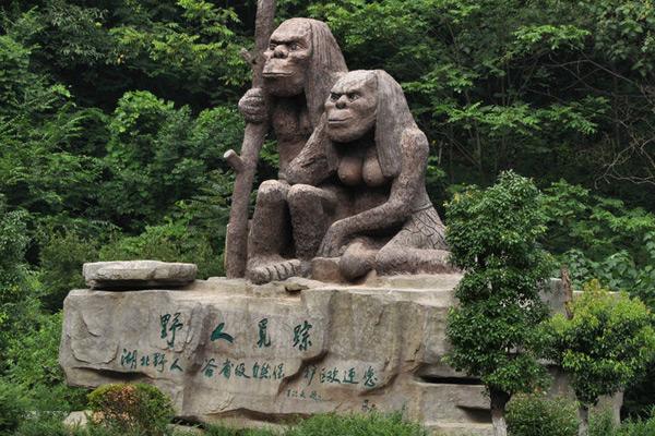 神农架野人之谜,传说中的野人很可能是棕熊