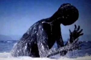 Ningen真的存在吗,美国和日本在南极的人造生命体