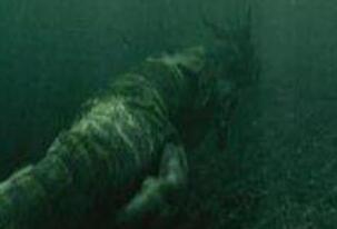 青海湖海底惊现12米巨型真龙,真龙图片曝光震惊众人
