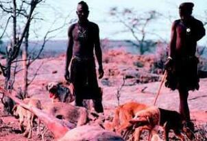 人类杀死了地球原住民,人类赶走尼安德特人后称霸地球