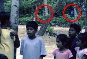 巴西亚马逊外星人事件,影片惊现奇异生物形似外星人